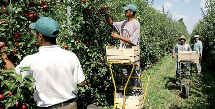 Canada : L'agriculture souffre d'une carence de main-d'oeuvre