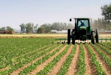 Plan agricole régional : 55 projets piliers I et II  en exécution à Casablanca-Settat