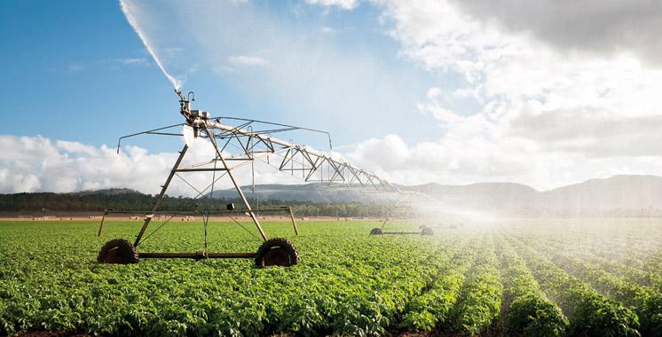 Saiss : 207 millions de dollars pour la modernisation du système d'irrigation