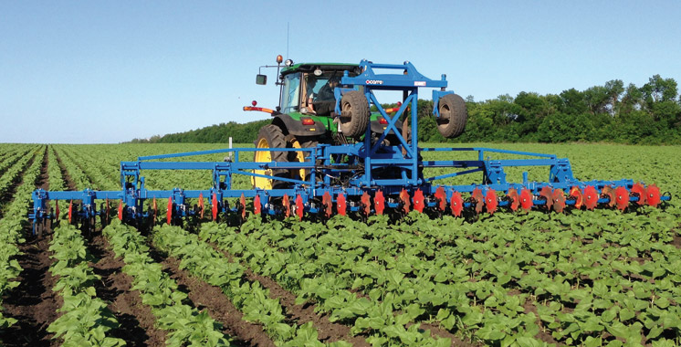Groupe Crédit Agricole: 50 milliards de dirhams pour accompagner l'agriculture