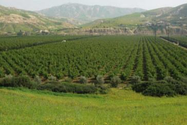 Fonds de développement rural  et des zones de montagne : Aziz Akhannouch met les points sur les «i»