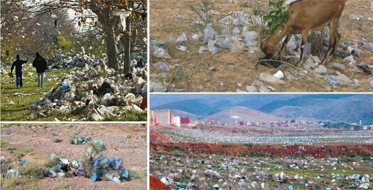 Environnement: Que la chasse aux sacs en plastique commence !