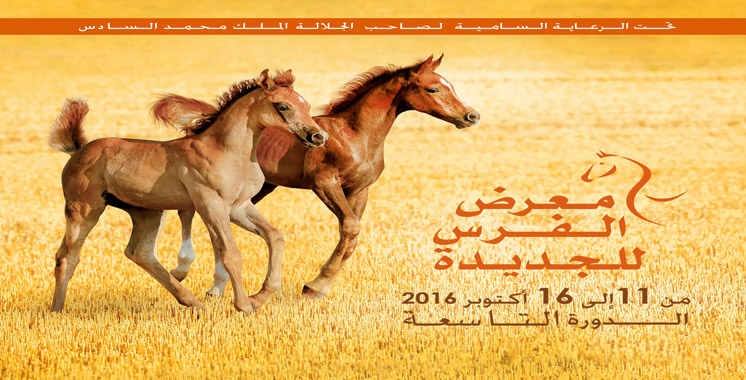 Salon du cheval: L'investissement à El Jadida à l'honneur