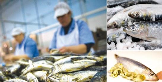 Deuxième édition de «Hout Bladi»: Le Maroc fête la sardine