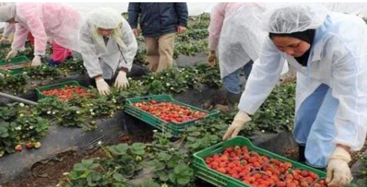 Espagne : Les Marocains au premier rang des travailleurs étrangers