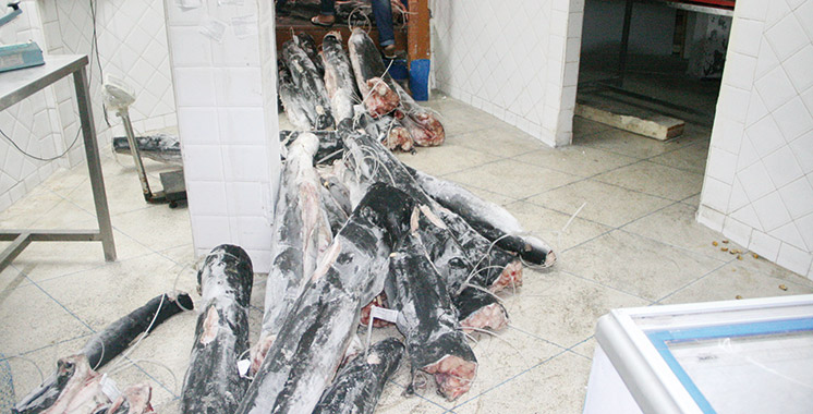 ONSSA : Saisie de 348 t de produits impropres à la consommation pendant le Ramadan