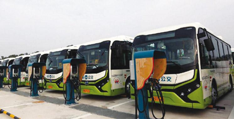 D'un investissement de 1 MMDH: Yang TZE ouvrira une usine à Tanger
