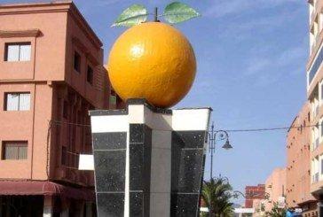 Création d'entreprises : 20 certificats négatifs délivrés en novembre dernier à Berkane