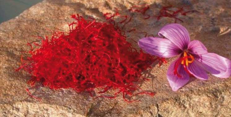 Al Hoceima à l'heure des 7èmes Journées de commercialisation des produits du terroir