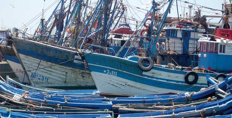 Débarquements de la pêche côtière et artisanale : Près de 4 milliards de dirhams générés  au premier semestre