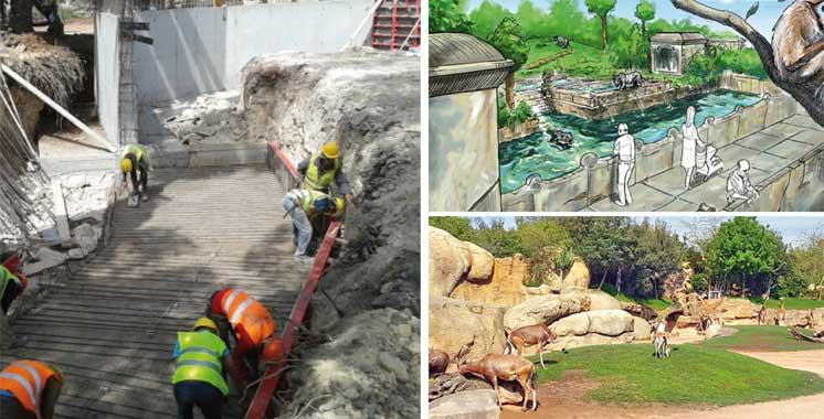 Réhabilitation du zoo de Ain Sebaâ : 30% des travaux réalisés