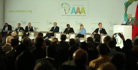Initiative en faveur de l'adaptation de l'agriculture Africaine-AAA