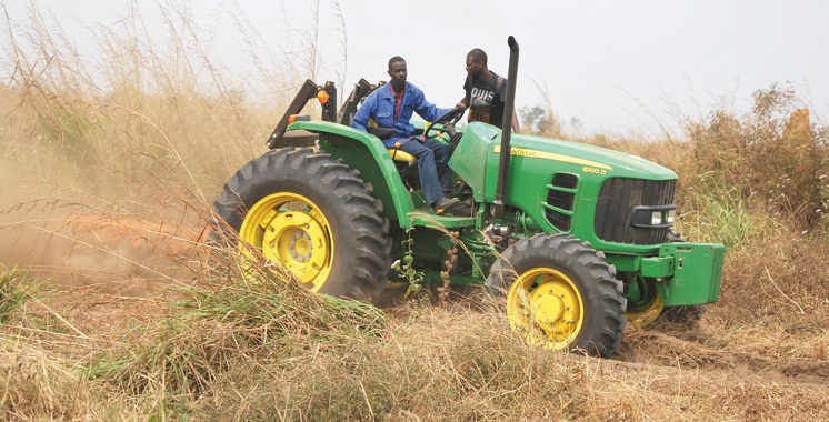 agriculture-africaine