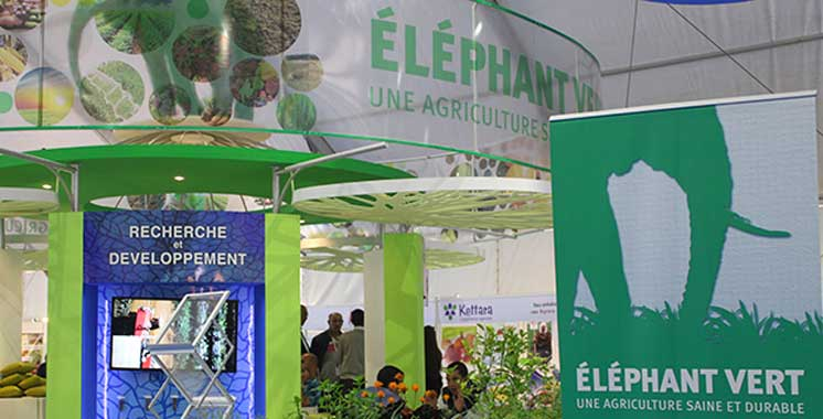 Un prêt de 24 millions d'euros de  la BERD pour soutenir Éléphant Vert