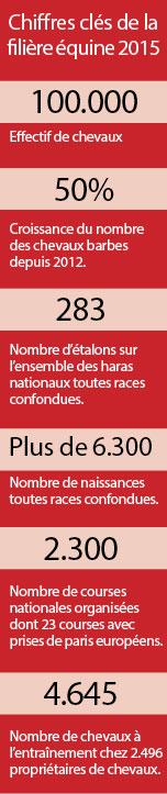 chiffres-cles-de-la-filiere-equine-2015