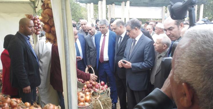 Festival national des oignons à El Hajeb: Les opportunités de valorisation de la filière au cœur du débat