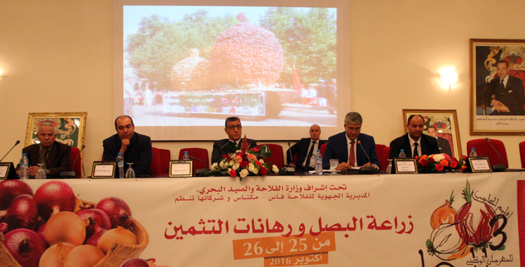 el-hajeb-festival-national-des-oignons-mohammed-sadiki