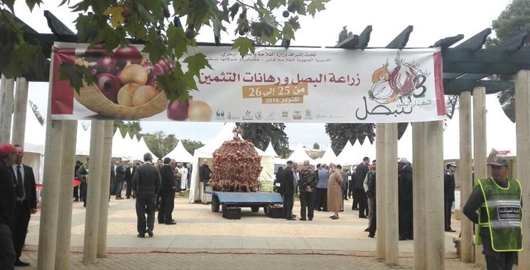 el-hajeb-festival-national-des-oignons