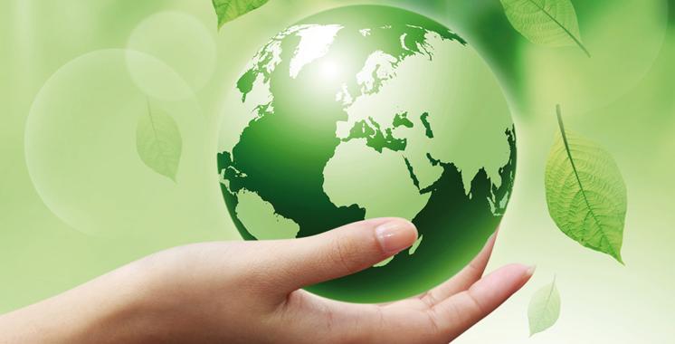 Cop22: Ce que recommandent les jeunes reporters pour l'environnement