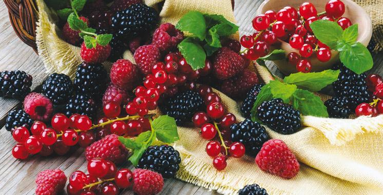 Fruits rouges : Bonne performance à l'export