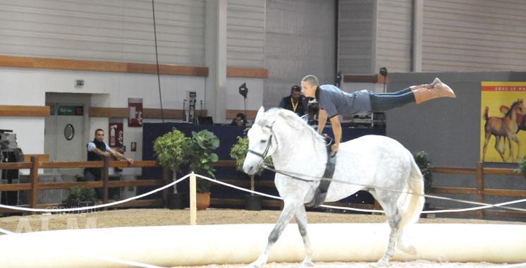 El jadida accueille la 10 me dition du salon du cheval for Salon du cheval montpellier 2017