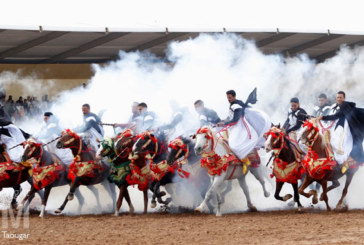 Concours interrégionaux de Tbourida: 332 sorbas en compétition