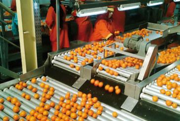 Plus de 21 milliards DH de produits alimentaires exportés à fin avril