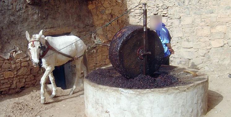 Un jeune tue l'employé d'un moulin et brûle son cadavre