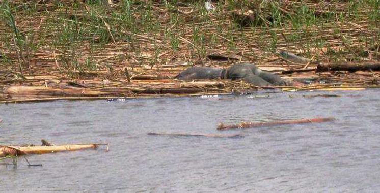 Pour 200 DH, ses amis le tuent  et jettent son corps dans un lac