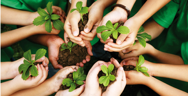 Les engagements écolos du Groupe Crédit Agricole du Maroc