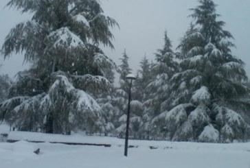 Vidéo: De la neige à Ifrane