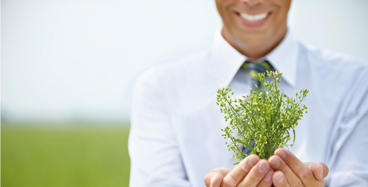 Entreprises: Projets verts, l'avenir  du secteur privé