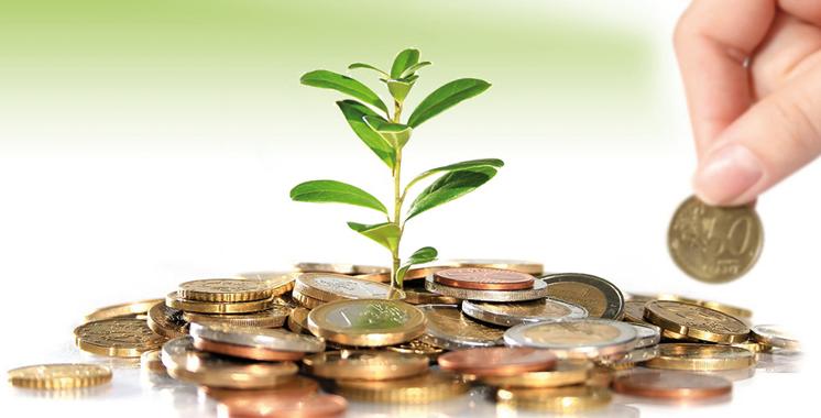 Transition vers une économie verte: Le financement et la fiscalité, les grands défis des entreprises