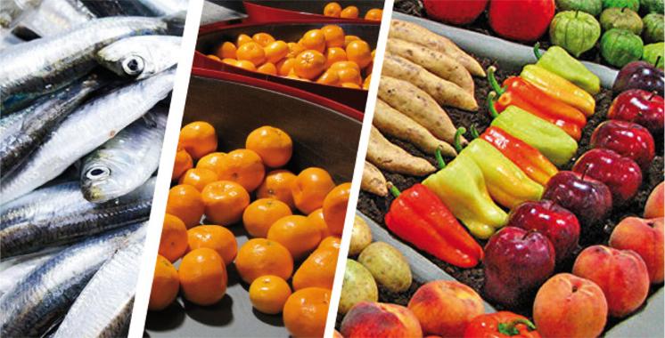 Promotion et développement: Les grandes lignes de la stratégie des exportations agricoles et maritimes