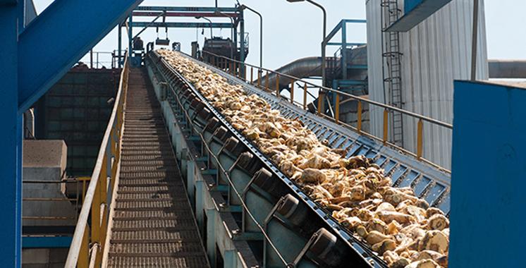 Le projet de fusion a été arrêté par le conseil d'administration: Sucrafor bientôt absorbée par Cosumar