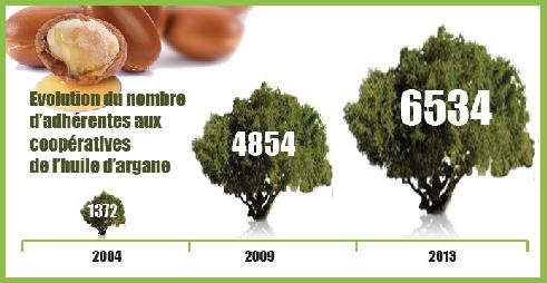 evolution-adherentes-cooperative-huile-argane