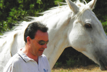 Entretien avec François Dry: «L'équicoaching pour gérer les problématiques de groupes en entreprise»