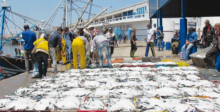 Pêche: La valeur des produits commercialisés en hausse de 21% au T1-2021