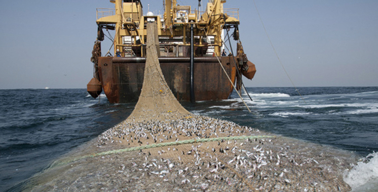 Comhafat organise un atelier pour une pêche légale et réglementée