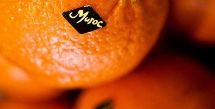 L'Accord agricole UE-Maroc demeure en vigueur : Les opérateurs étaient en première ligne