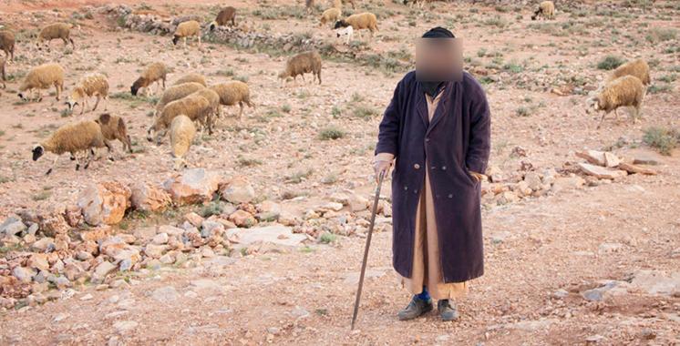 Nador : Un berger arrêté pour meurtre