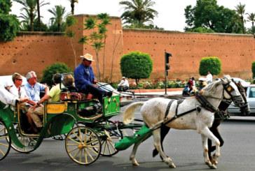 Marrakech capitale mondiale des droits de l'Homme du 10 au 12 octobre