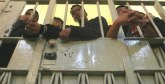 Hooliganisme : Des peines de  3 et 4 mois avec sursis pour  23 supporters