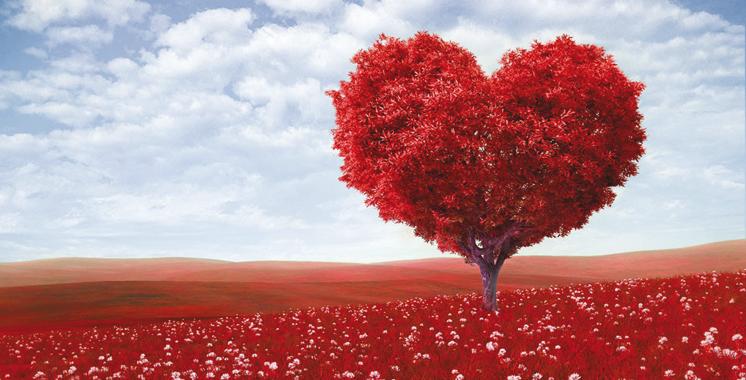 «Sans Valentins»: Le Love Coaching, ça existe au Maroc !