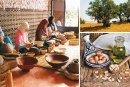 Argane : Les coopératives en quête de compétitivité