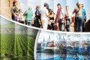 Souss-Massa : Le Plan de développement régional adopté