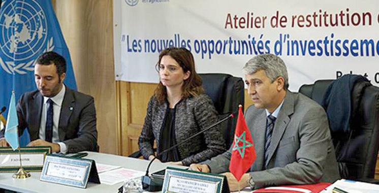 Coopératives agricoles :  La FAO et la BERD examinent les potentialités