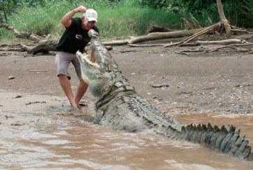 Australie: un pêcheur aurait été tué par un crocodile