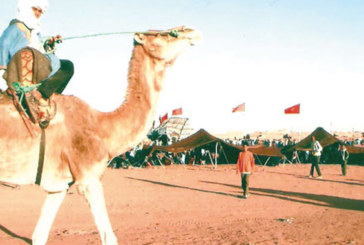M'hamid El Ghizlane abrite le moussem de Sidi Naji