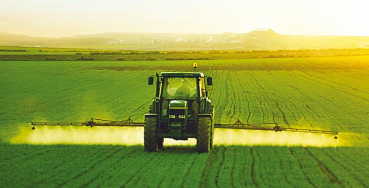Campagne agricole : Une bonne moisson en vue